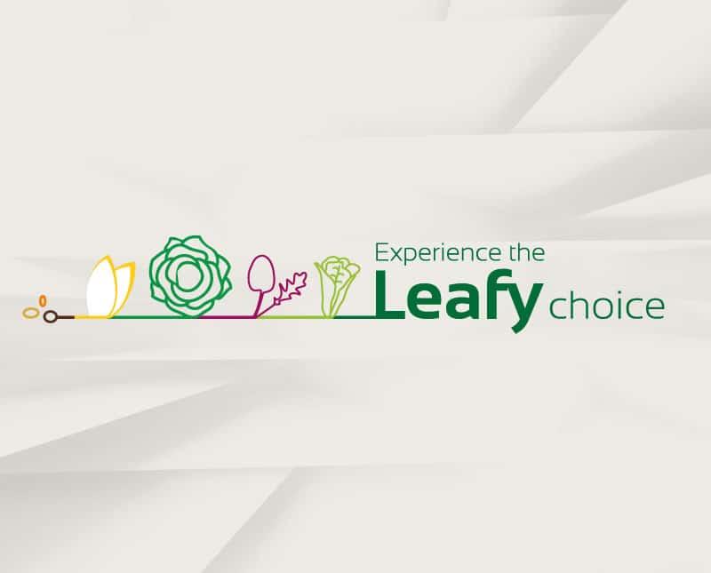 LOGO LEAFY_COLETTEANDCO